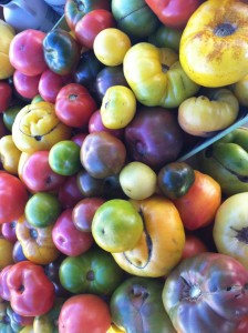tomatoes heirloom - ingra